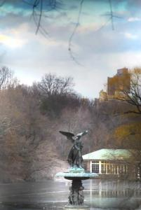 peaceful-viewinCentralPark